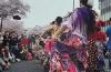 2020・4・5㈰中止決定(T_T)日立市さくら祭り フラメンコLIVE in 常陸ビル前